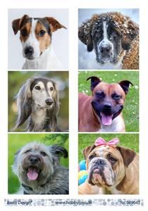Bilde av Barto Design - Klippeark A4 - 069043 - Dogs 2
