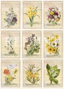 Bilde av Reprint -  A4 Klippeark - KP0059 - Vintage Easter - Flowers