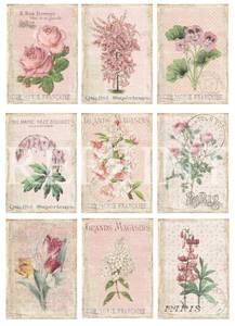 Bilde av Reprint -  A4 Klippeark - KP0073 - Flower