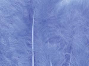 Bilde av Fjær - Marabou - 15 stk - Blå