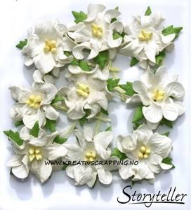 Bilde av Storyteller - Gardenia små - Hvit - 3412