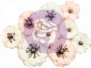 Bilde av Prima - 637385 - Flowers - Poetic Rose - Flowers Daydreams