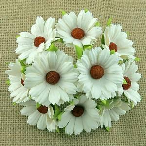 Bilde av Flowers - Chrysanthemums - SAA-266 - Ivory - 50stk